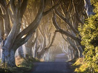 """Roadtrip: Eintauchen in die Welt von """"Game of Thrones"""""""