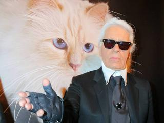 Wer kümmert sich nun um Karl Lagerfelds Katze Choupette?